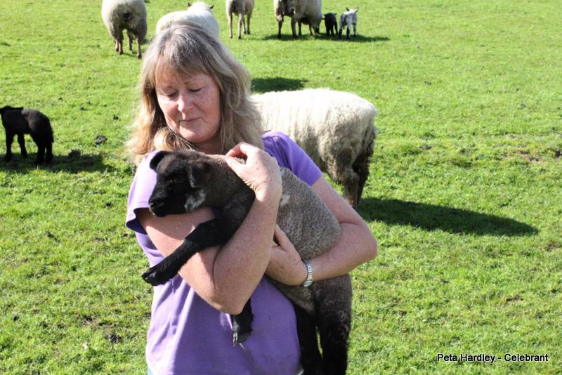 Peta with Spring lamb